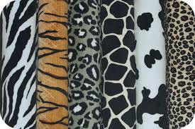 aniumal print, animal print scarves